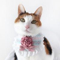 [MIYOPET] 핑크플라워 고양이 강아지 스카프 넥카라