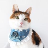 [MIYOPET] 큐티블루 고양이 강아지 스카프 넥카라