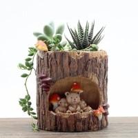 통나무 곰돌이 가족 다육 식물 화분