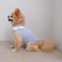 Stripe Collar T-shirts