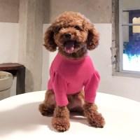 Hot Pink 셔링 티셔츠