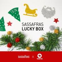 [ONLY 10X10]사사프라스 크리스마스 LUCKY BOX
