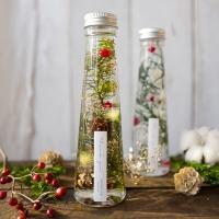 하바리움(herbarium) - 트라이앵글보틀 - 크리스마스 (겨울한정)