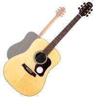 Walden / 월든 어쿠스틱 기타, 중급형 최고 사양 / [D71_(828818)