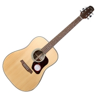 Walden / 월든 어쿠스틱 기타, 탑솔리드 / [D550]_(831305)