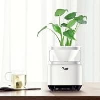 NEST 반려식물 공기청정기 플렌트 NTAP01