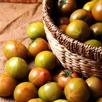 봄에만 맛보는 짭쪼름한 대저토마토 2.5kg_(772883)