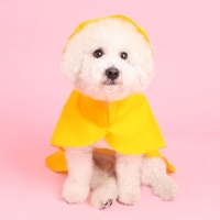 판초레인코트(yellow) Poncho raincoat