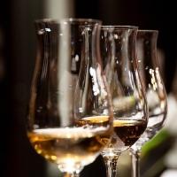 [텐텐클래스] (혜화) 와인 완전 정복 프로젝트, 와인 A to Z