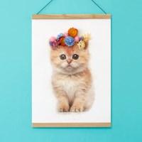플라워포켓 고양이