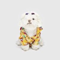 바잇미 반려동물 알로하 플로랄 셔츠 -옐로우