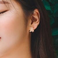 멸종위기 눈표범 귀걸이/귀찌