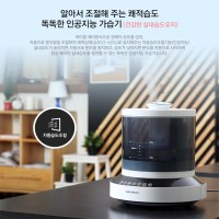 대우 인공지능 디지털 초음파 대용량 미세가습기 DEH-F3000