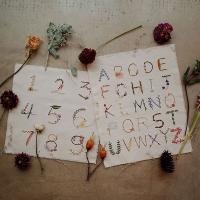 힐링취미 프랑스자수 KIT - 꽃과 풀로 수놓는 알파벳 포스터 만들기
