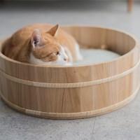 고양이도넛 2배더단단한 오동오동냥 스크래쳐하우스 L_(853968)