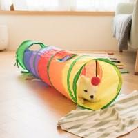 바스락 고양이 무지개 터널 장난감