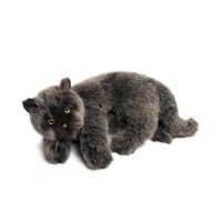 4156 친칠라 고양이인형_(1215037)