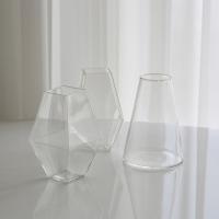 Glass Vase 유리화병