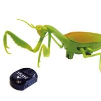 자이언트 사마귀RC /무선조종기/곤충/피규어/장난감