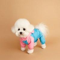 Hooded Raincoat 후디드 레인코트_ Pink/Blue