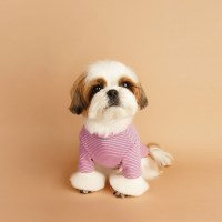 New Basic Stripe T-Shirts 뉴 베이직 스트라이프 티셔츠_ Pink