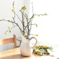 산동백 생화 그린 인테리어 식물 소품