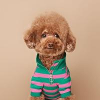 칵테일 아노락 티셔츠 (Green&Pink)