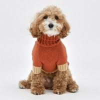 Brick Cashmere Knit