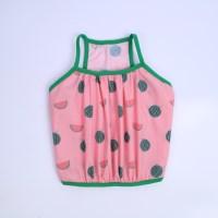 furit crop top(watermelon)