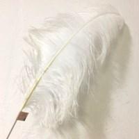 뽀시래기 1m 왕타조깃털 고양이 장난감