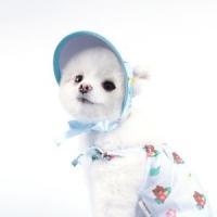 플로랄 썬캡 - 블루