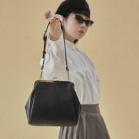 Olsen frame mini bag_black