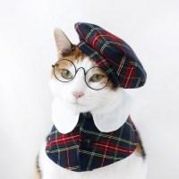 잉글랜드 체크무늬 망토 케이프 모자 고양이 강아지 옷 Miyopet