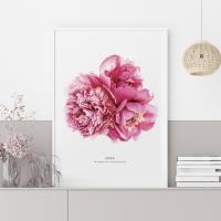 러브 모란 꽃 액자 보테니컬 그림 인테리어 포스터