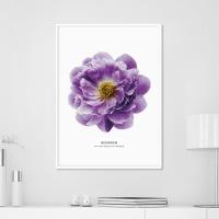 블로썸 모란 꽃 액자 보테니컬 그림 인테리어 포스터
