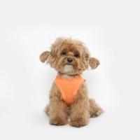 강아지 베이직 민소매 티셔츠 (오렌지)