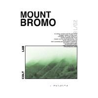 Mount Bromo 포스터