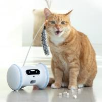 바램펫 피트니스 Pro 로봇 고양이팩 (바램트릿+장난감키트 포함)