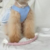 개달당 줄다리기 오가닉 터그놀이 로프토이 강아지장난감 터그놀이