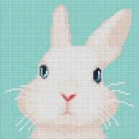 아기 토끼 (캔버스형) 보석십자수 25x25