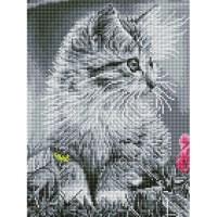 흑백 고양이 (캔버스형) 보석십자수 30x40