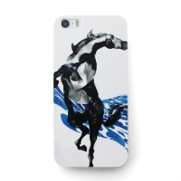 [EPICASE] Art case for iPhone5/5S, Curve