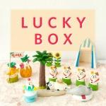 [10x10단독] 데꼴 2017 하와이 Edition LUCKY BOX