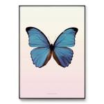 메탈 북유럽 동물 아이방 인테리어 포스터 액자 나비
