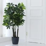홍콩 야자 조화 나무(115cm)
