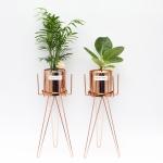 육각화분스탠드+Copper화분(공기정화식물) 세트