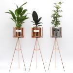 공기정화식물+화분스탠드