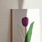 forever love, tulip poster