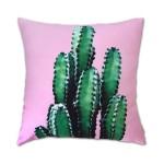 Oasis Cushion