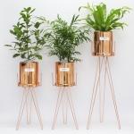중형코퍼화분+화분스탠드+공기정화식물